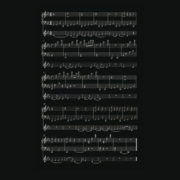 partition-diane-schuh-web-1500